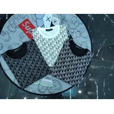 Dior ディオール 春夏新作高品質 綿半袖プリント3色ブランドコピーTシャツ国内発送専門店